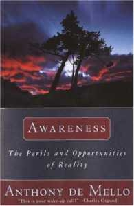 Awareness - The Book